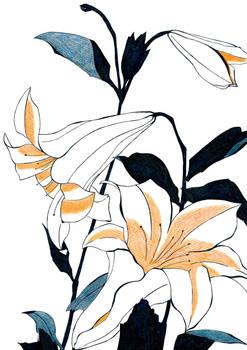 After Hokusai Lilies