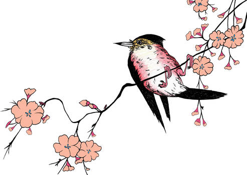 After Ohara Koson, Red Bird and Cherry Blossoms