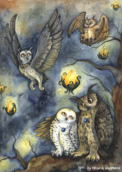 Owls of ga hoole by kiriOkami