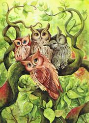 the owltastic four