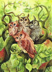 the owltastic four