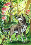 Wolf ACEO :)