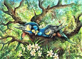 Golden shouldered Parrot by kiriOkami