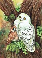 Owl friendship by kiriOkami