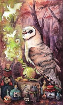 Magic Barn Owl