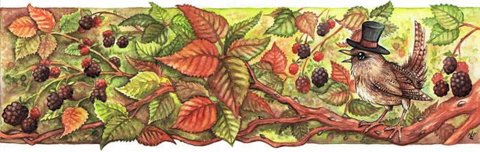 Blackberry Wren