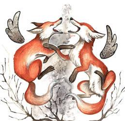 Foxes Dtiys