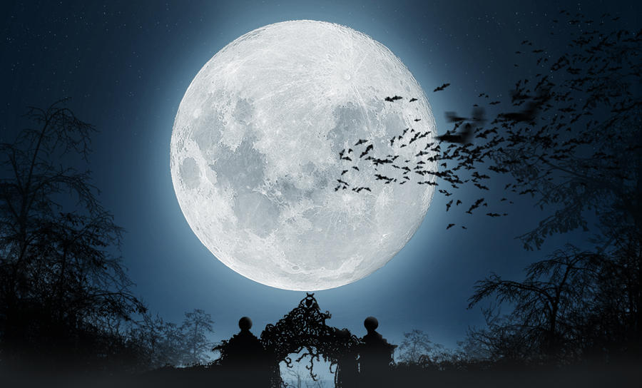 Mesečina - Page 6 Clair_de_lune_by_ricke76-d38xhzx