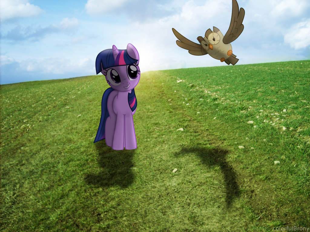 Grass grows, birds fly, sun shines... [PIRL] by colorfulBrony