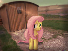Uhm, would you mind going away from my shed?[PIRL] by colorfulBrony