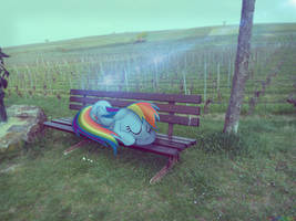 [Gift] Wake up, you sleepy head [PIRL] by colorfulBrony