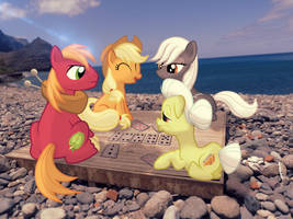 [Commision] Playing cards at the beach [PIRL] by colorfulBrony