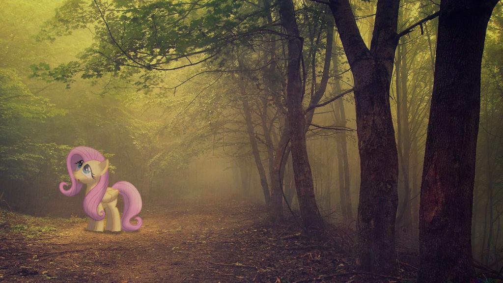 Foggy-shy [PIRL] by colorfulBrony