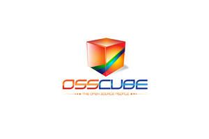Oss cube logo by kazedesign
