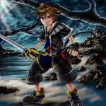 KH2 Sora colored finally
