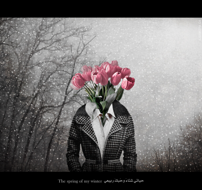 The spring of my winter by il6amo7a-Q8