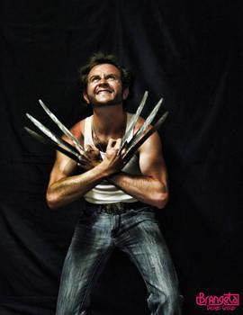 Wolverine Costume 3