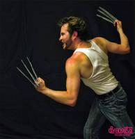 Wolverine Costume 5 by Brangeta