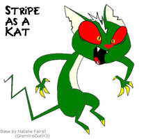 Stripe the Kat