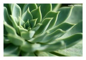 Green Ripples of Memories by codeslacker
