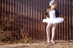 Ballet and the City 1