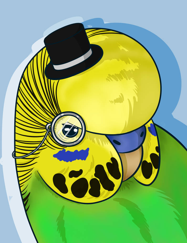 Lord Budgie the Second