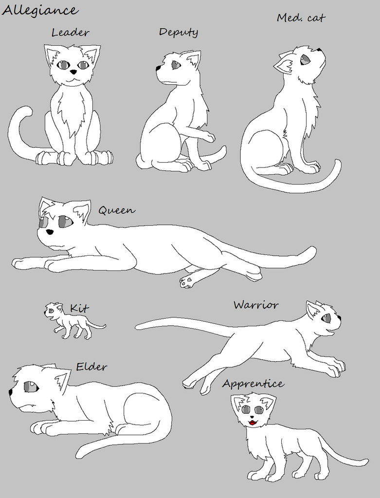 NEW HOW TO DRAW A CAT COUPLE