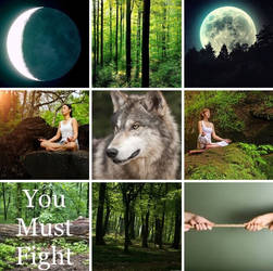 Timber Wolf Aesthetic Board