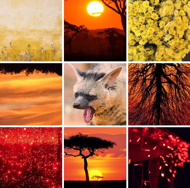 [Image: aardwolf_aesthetic_board_by_sungryeong_ie-dcb86d0.jpg]