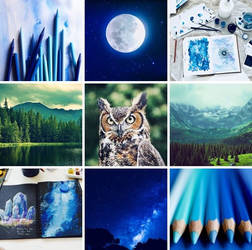 Northern Great Horned Owl Aesthetic Board by SungRyeong-ie