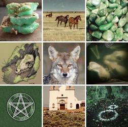 Coyote Aesthetic Board by SungRyeong-ie