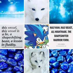 Shapeshifter Aesthetic Board by SungRyeong-ie