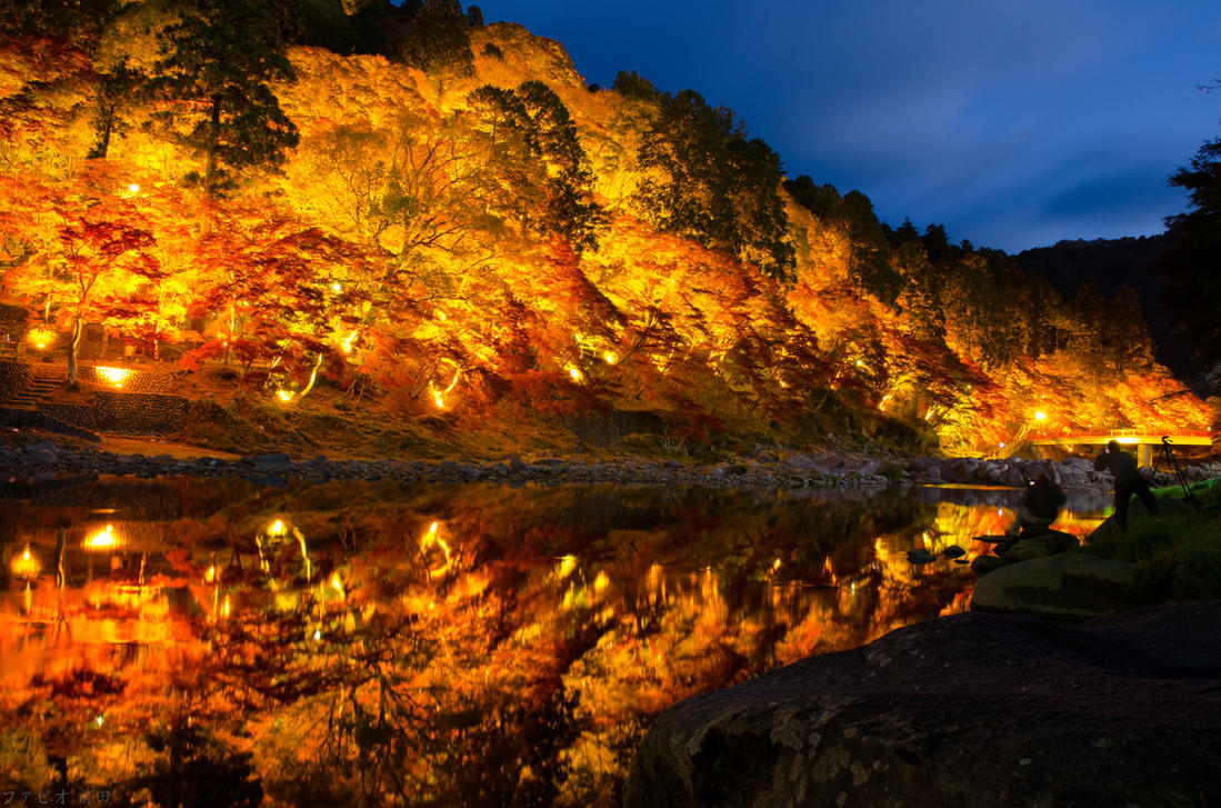 autumn ilumination by fkendi