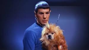 Leonard Nimoy Spock III by Dave-Daring