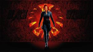Scarlett Johansson black Widow XXVI