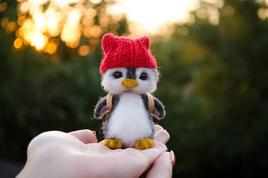 Penguin named Aku 3
