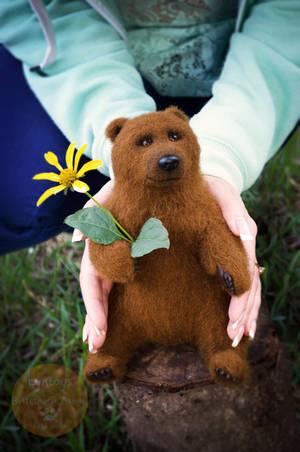 Bear named Myron by Lyntoys