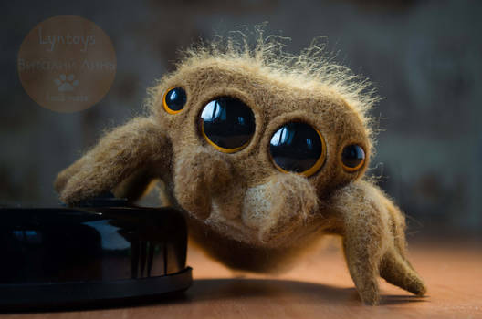 CUTE JUMPING SPIDER Needle Felted