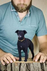 Black labrador Memorial Pet Toy by Lyntoys