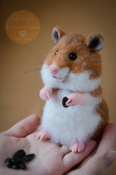 The hamster Needle Felted by Lyntoys