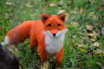 The Fox Needle Felted Toy
