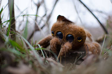 Jumping spider Art toy