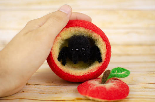 Red apple bowl with the spider, needle felted art