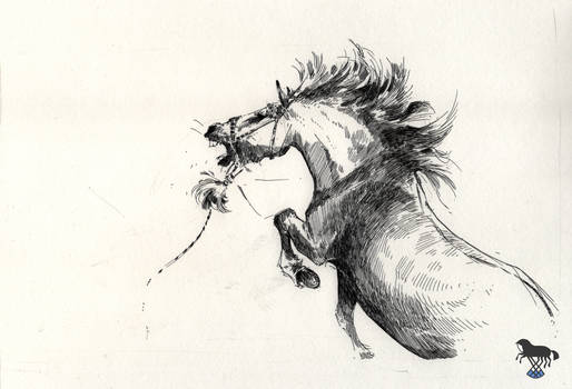 Sketch of angry horse