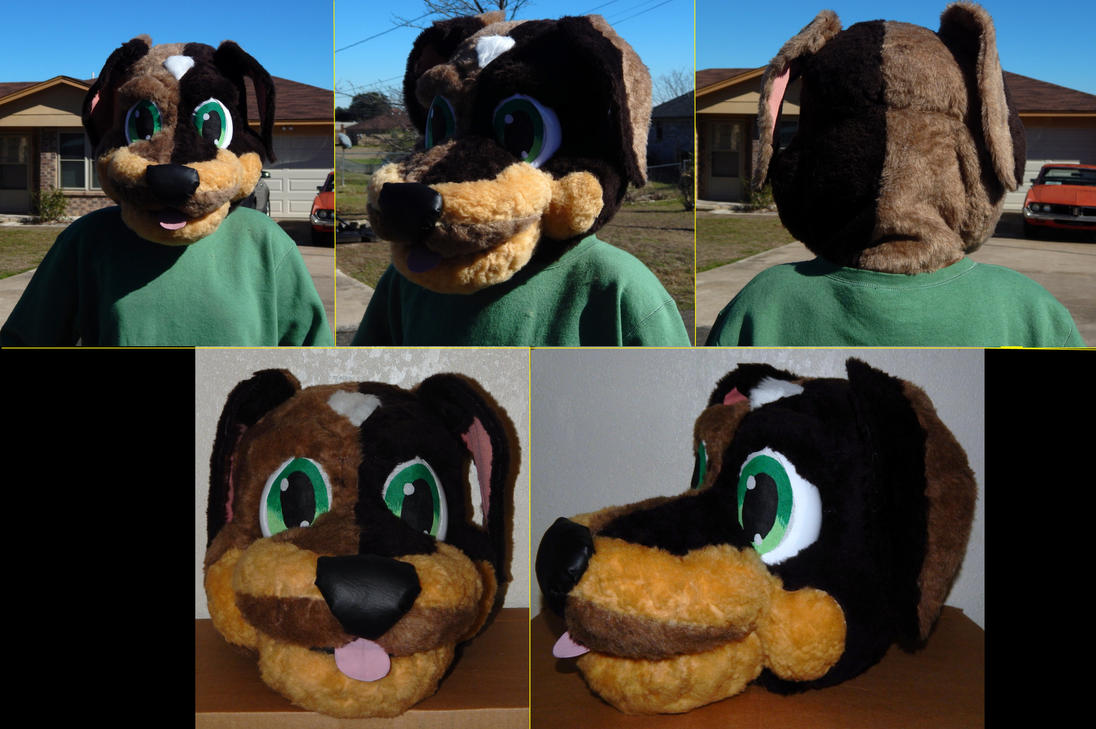 My First Fursuit / Mascot Head by kikyo4ever