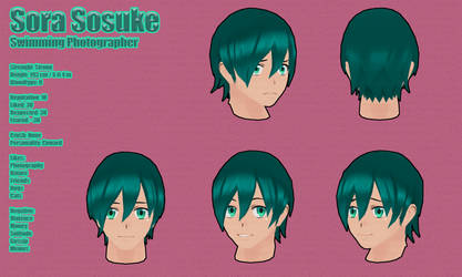 QYanSim: Sora Sosuke