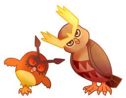 Judgemental owls