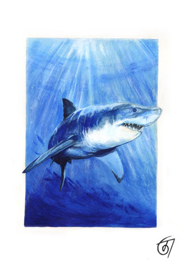 Great White Shark by JaniceDuke