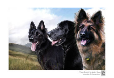 Three Sisters by JaniceDuke