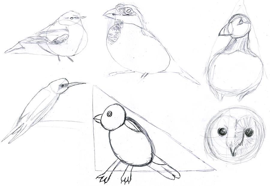 Bird Drawings by JaniceDuke